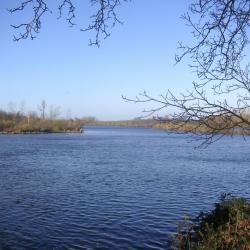 Prise étang Somme