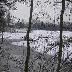 Marais des Paillons